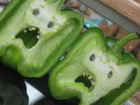 4. Someone Cut A Bell Pepper And They Found That It Was Terrified Inside