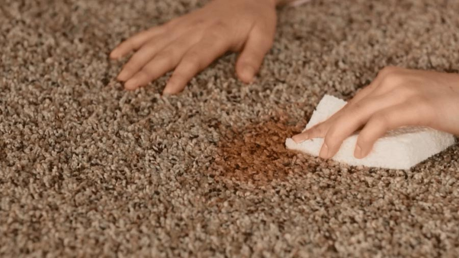 Remove Stubborn Carpet Stains With Just One Ingredient